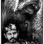 Eléphant et son cornac